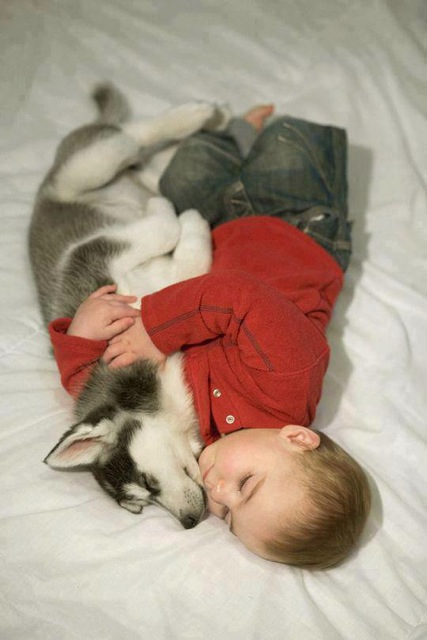 I Want To Cuddle With You Baby: 25 Adorable Photos That Prove Why Babies Need Pets