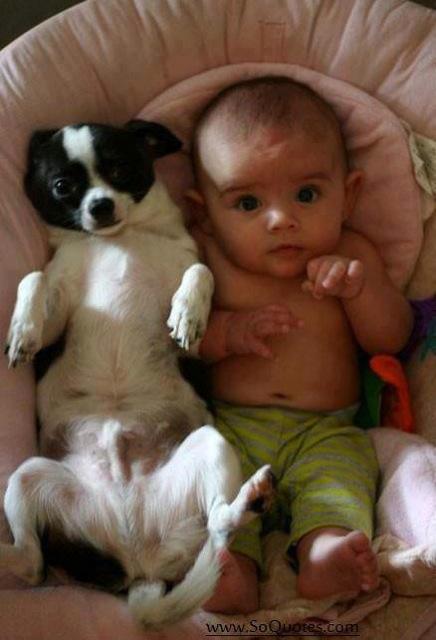 baby-sharing