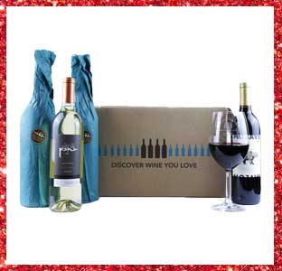 Bright Cellars wine, 2016 weeSpring holiday gift guide